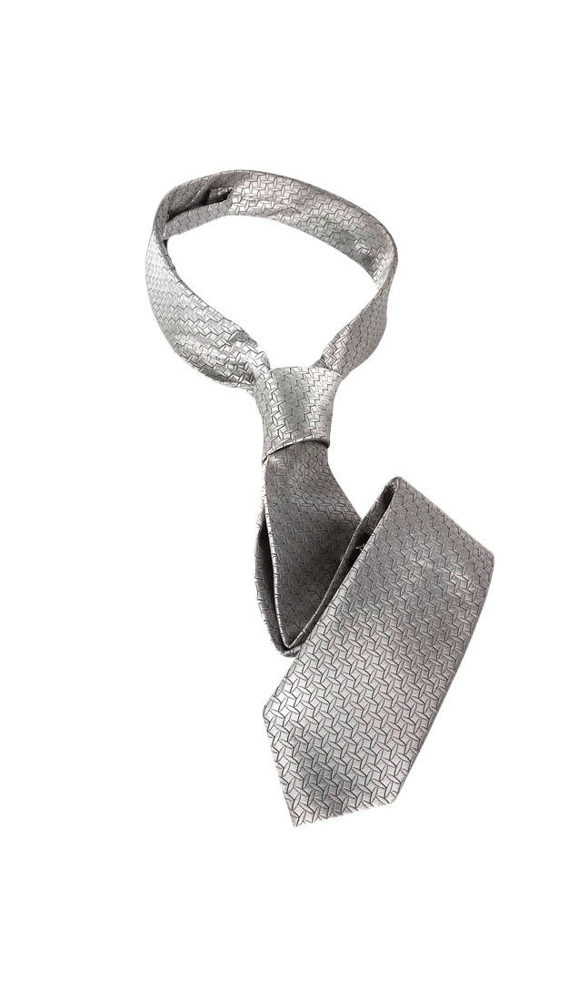 Image of   Fifty Shades Of Grey Sølvslips