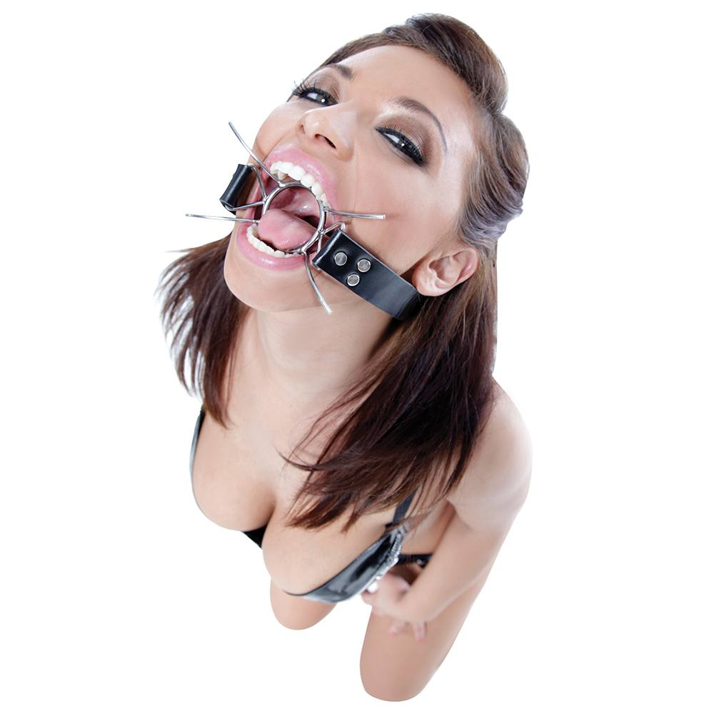Image of   Pipedream Spider Gag